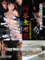 Meat Slave Life : Jun Shiina